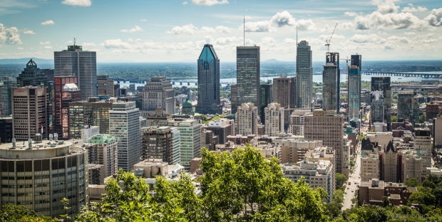 Tikka Vandoggo Montreal Lookout 01-1