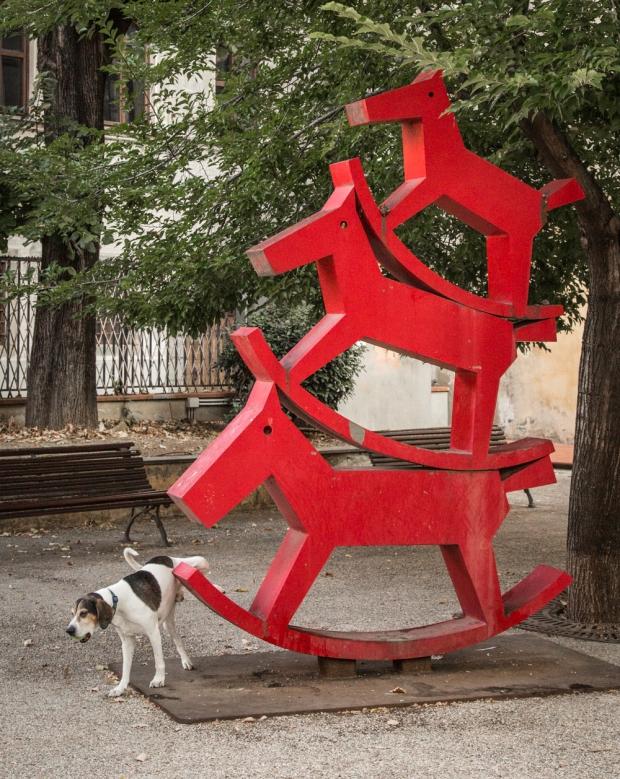 Tikka Vandoggo Dog Florence -19.jpg