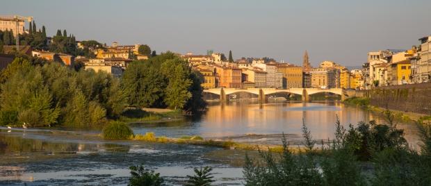 vandoggo in Florence-1.JPG