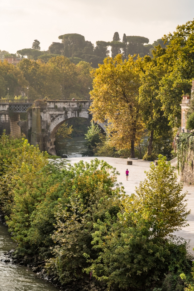 vandoggo-dog-travel-rome-tiber-river