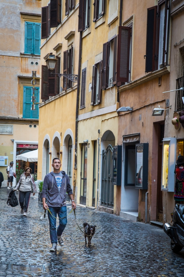 vandoggo-dog-travel-rome2-2
