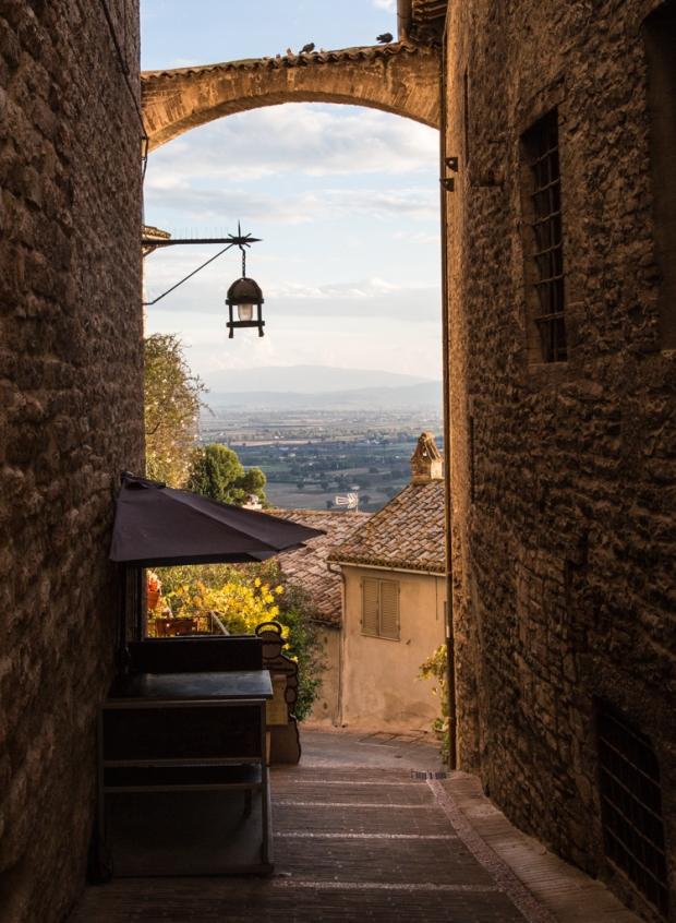 vanDoggo Tikka Italy Assisi-15.JPG