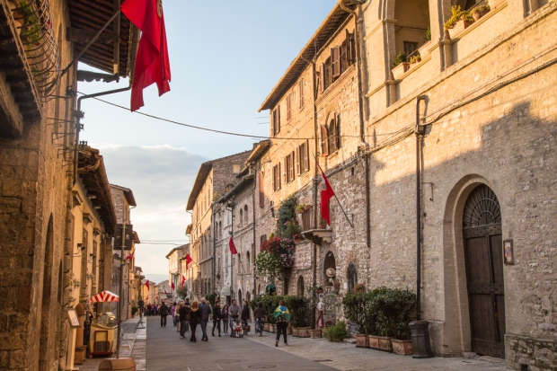 vanDoggo Tikka Italy Assisi-16.JPG
