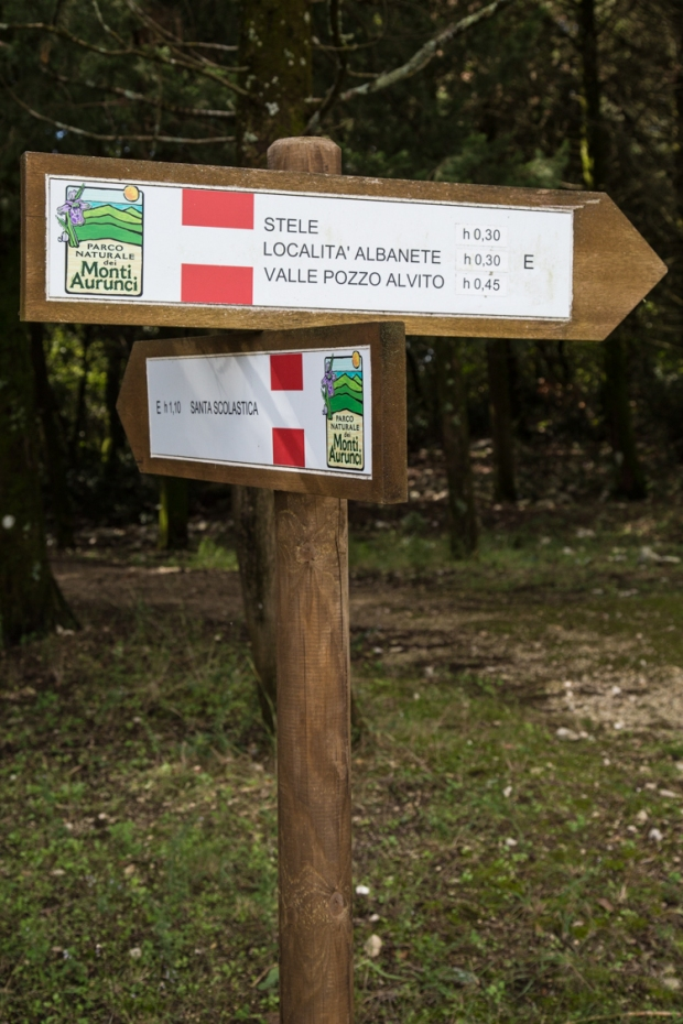 vanDoggo Tikka Italy Assisi-7.JPG