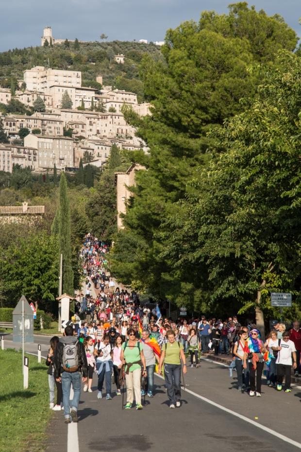 vanDoggo Tikka Italy Assisi-9.JPG