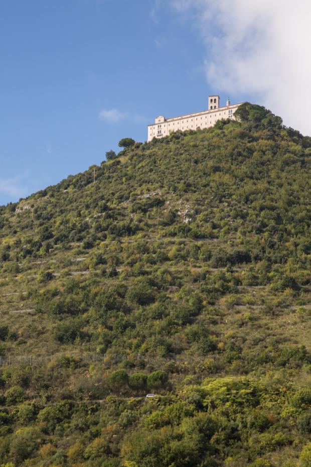 vanDoggo Tikka Italy Assisi.JPG